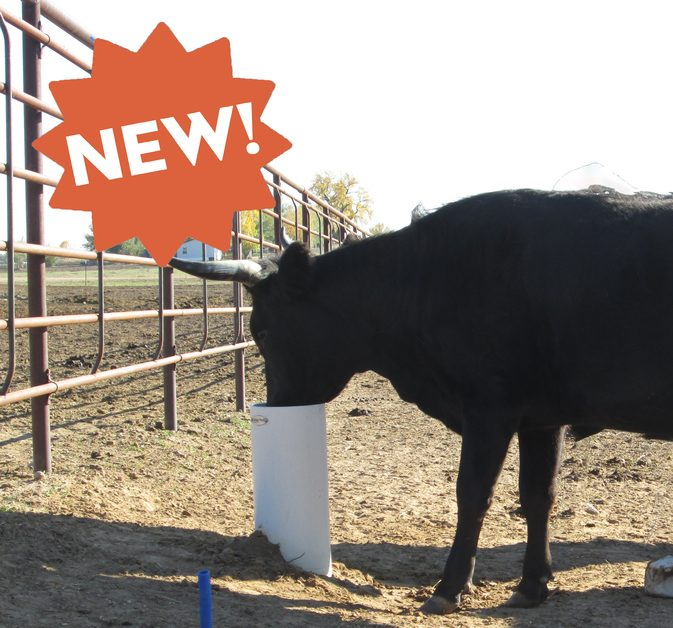 Ultimate Cattle Watering Post 2
