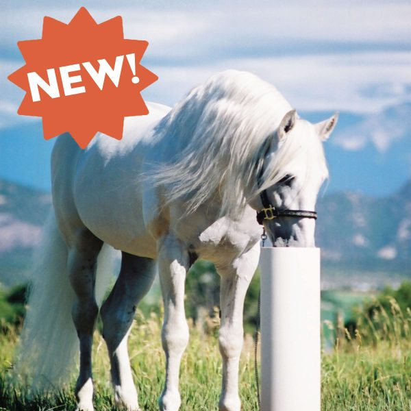 Ultimate Horse Watering Post