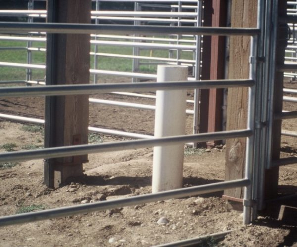 Run Ins automatic_frost_free_waterer_installed_outside_next_to_barn (1)