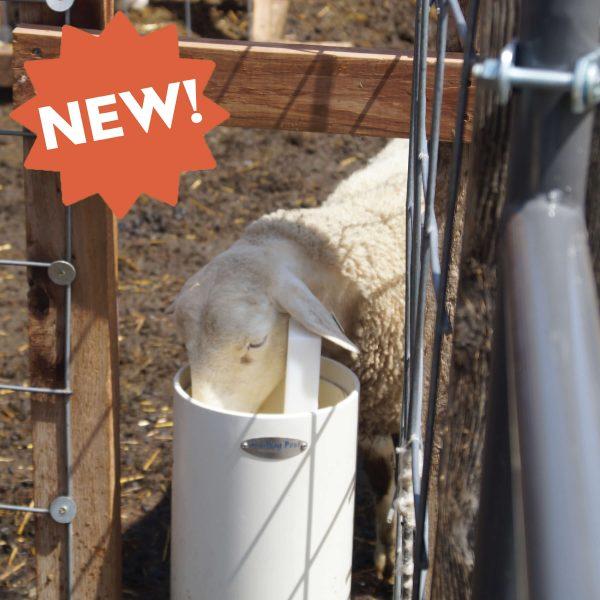 Ultimate Sheep Watering Post