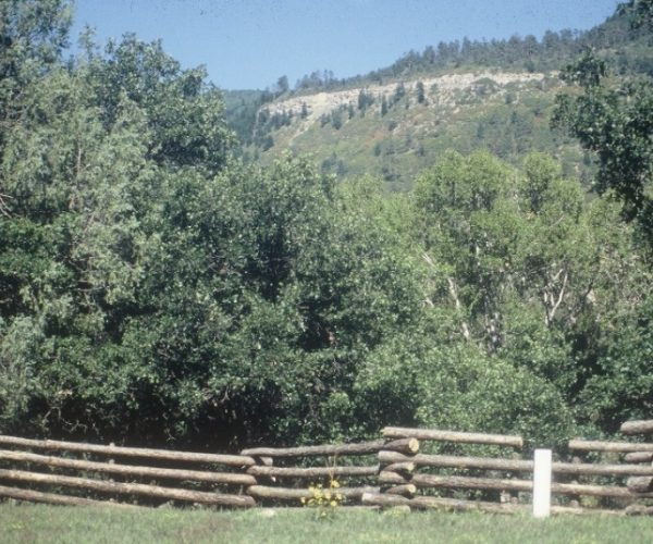 frost_free_automatic_waterer_installed_along_split_rail_fence_with_scenic_ciff_band_in_background