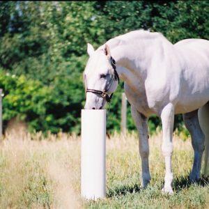 horse_waterer_in_field